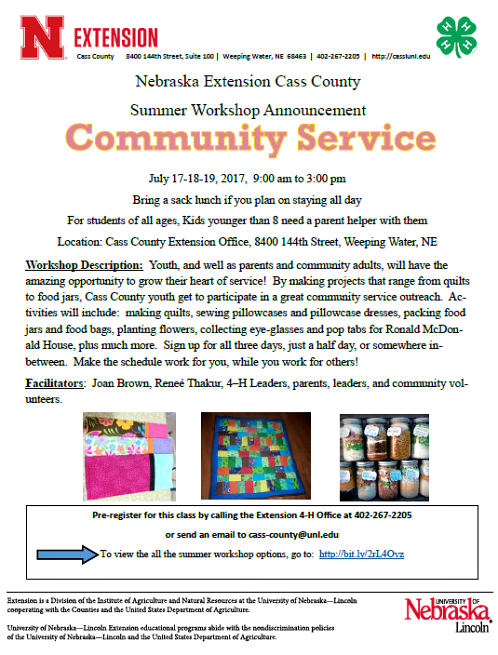 2017 06 28 4 H Community Service Workshop