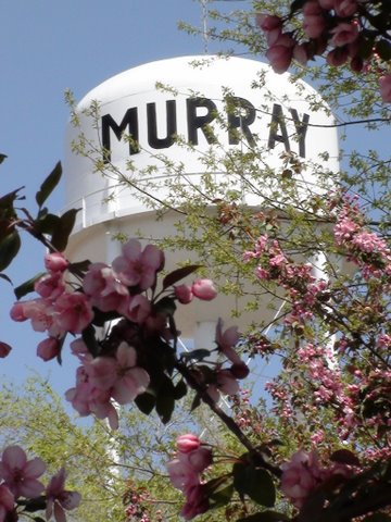 04-17-10_Murray_Water_tower