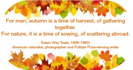 2015-11-18 Autumn_quote