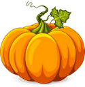2016 09 28 pumpkin for border