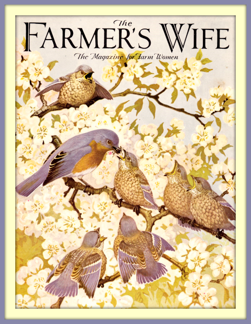 2016 04 06 Farmers Wife mag cover June 1934