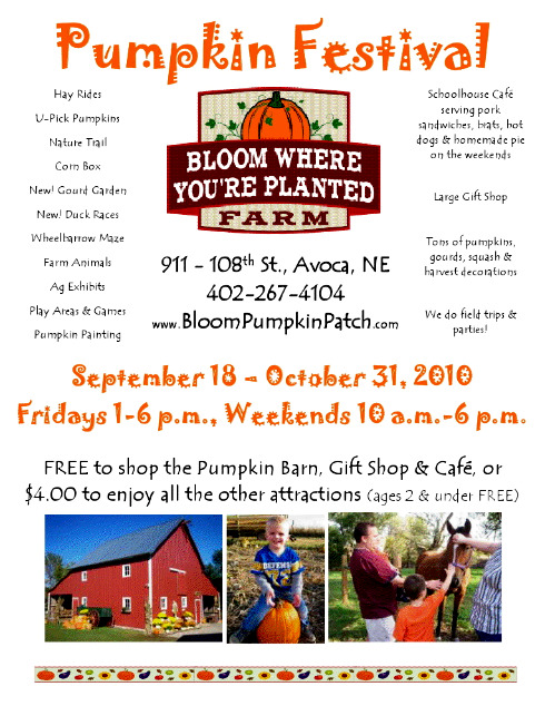 Pumpkin_Patch_Flyer