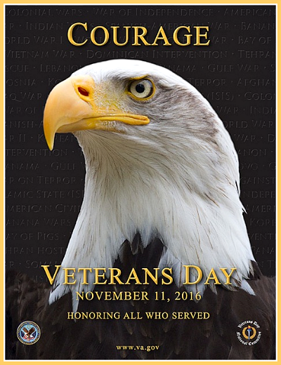 2016 10 12 LOFTE Vets Day eagle