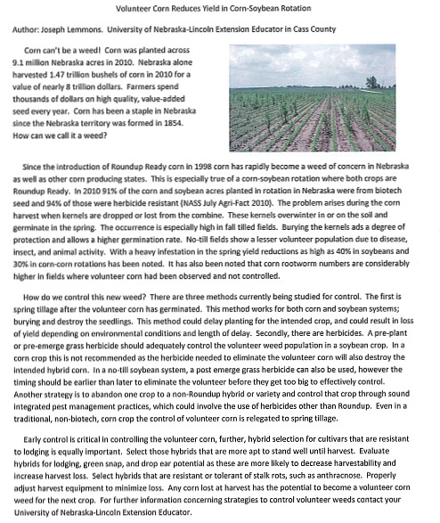 2011-04-06_Volunteer_corn_reduces_yields
